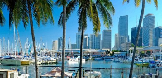 Moving to Miami: Top US City for Tech Startups to Get Hundreds of New Homes